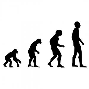 L'evoluzione umana: origine e diffusione fra natura e storia - Docente: Beatrice BACCHIOCCHI
